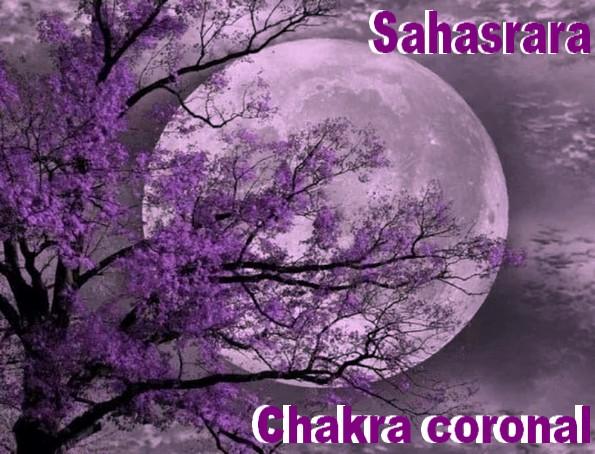 Chakra coronal